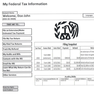 Tax Design Challenge Submission, My Federal Tax Account, thumbnail
